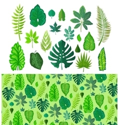 Set tropical leaves collection green leafs vector