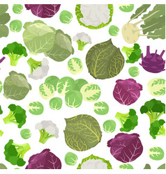 Cabbage beneficial features seamless pattern vector
