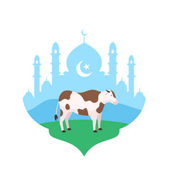 cow at mosque courtyard flat for eid al adha the vector image