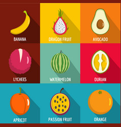 fruit nutrition icons set flat style vector image