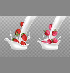 milk splash with berry fruits realistic vector image