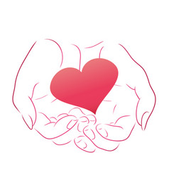 pink heart in women contour hands for your design vector image