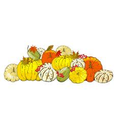 set autumn elements isolated on white vector image