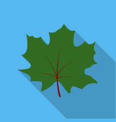 Maple leaf icon in flat style for web vector