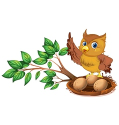 An owl watching the eggs vector image