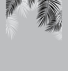 black and white palm leaf background vector image