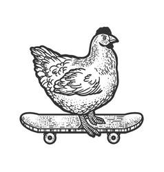 Chicken on skateboard sketch vector