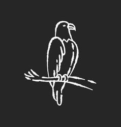 eagle chalk white icon on black background vector image