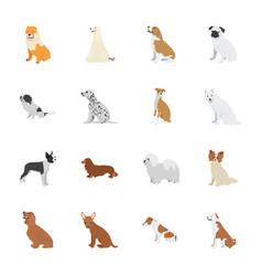 pet dogs icons vector image