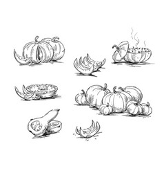 pumpkins dishes with pumpkin vector image