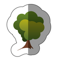 color stamp stylized tree icon vector image