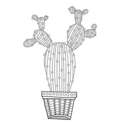 Cactus succulent black and white vector