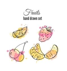 fruit Set of hand drawn fresh vector image