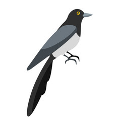 Magpie icon flat style vector