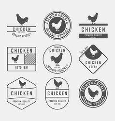 set of premium chicken labels badges and design vector image