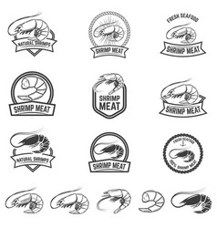 Set of shrimp meat emblems fresh seafood design vector
