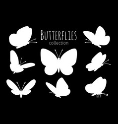 white butterfly silhouettes vector image