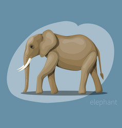 image of an african elephant vector image vector image
