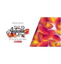 autumn 41 vector image