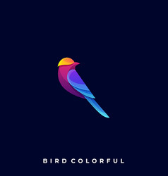 beautiful bird template vector image