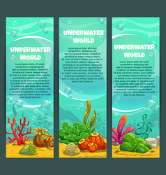 cute bright ocean underwater vertical banners set vector image