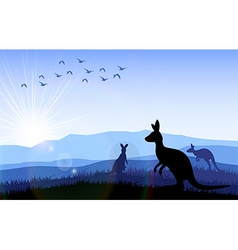 Family of kangaroo standing on the time of morning vector