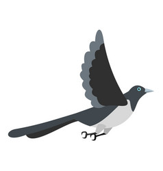 Flying magpie icon flat style vector