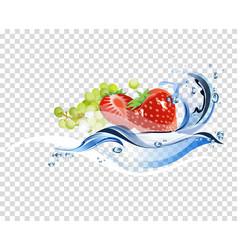 fresh fruits vector image vector image