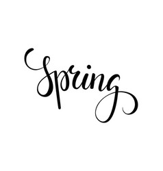 hello spring hand drawn calligraphy and brush pen vector image