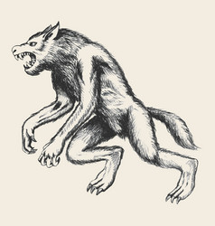 Werewolf sketch vector