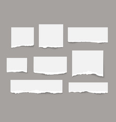 White torn paper tears pieces collection isolated vector
