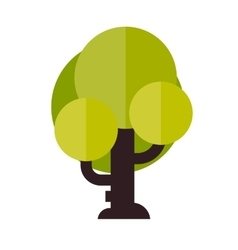 a tree in flat style vector image vector image