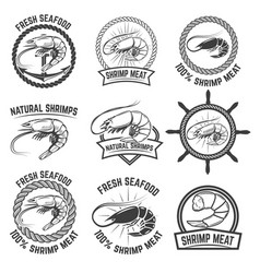 set of the shrimps meat labels isolated on white vector image vector image