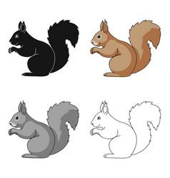 squirrelanimals single icon in cartoon style vector image