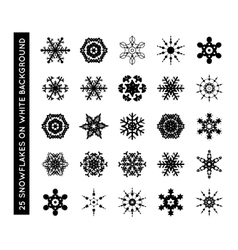 Collection of beautiful snowflakes vector image