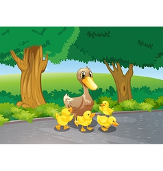 A mother duck and her ducklings at the road vector