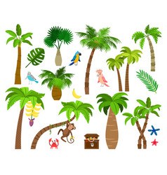 brazil nature elements vector image
