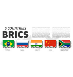 brics and membership association 5 countries vector image