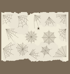 Cobweb set vector