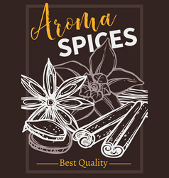 flavoring spices chalk hand drawn poster template vector image