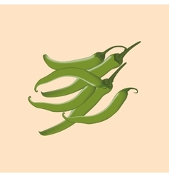 Green Chili Pepper Icon vector image