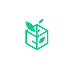 leaf box plant logo icon line art outline monoline vector image