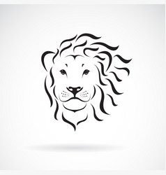lion head design on a white background wild vector image