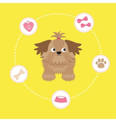 Little glamour tan Shih Tzu dog stuff Dash line vector