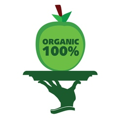 organic apple on a tray vector image