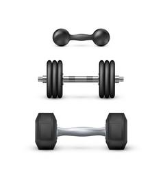 Set realistic dumbbells equipment vector
