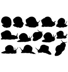 snail set vector image