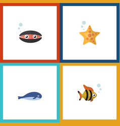 flat icon sea set of scallop cachalot seafood vector image