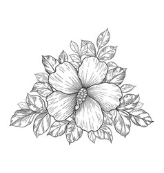 Hand drawn floral composition with hibiscus vector