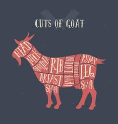 Meat cuts - goat diagrams for butcher shop vector